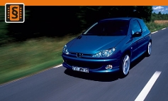 ECU Remap - Chiptuning Peugeot  206